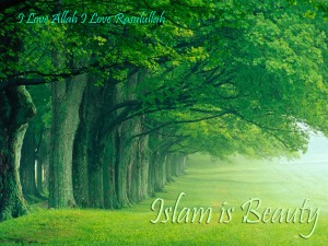 Islam is Beauty